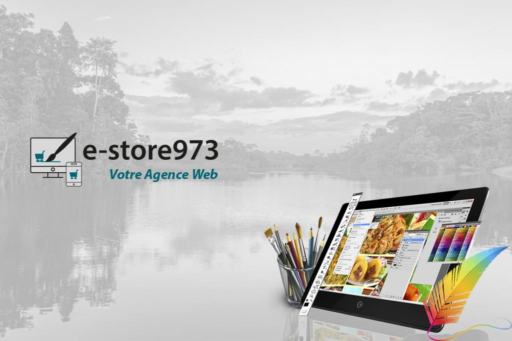 Bannière E-Store973